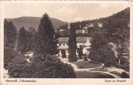 Carte Postale, Herrenalb, Schwarzwald, Partie Im Kurpark - Bad Herrenalb
