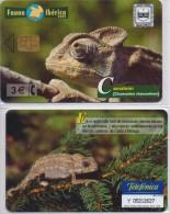 SPAIN PHONECARD CAMELEON-P506 -8000pcs -5/02-MINT/SEALED - Oerwoud