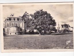 ARRADON (20)-56 - La Mairie - 16 Gaby Artaud - Arradon