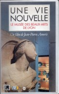 Une Vie Nouvelle - Le Musée Des Beaux-arts De Lyon - Documentaire