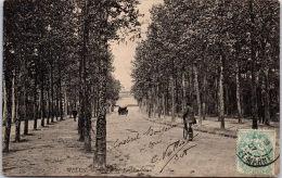 77 MELUN --- Avenue De Fontainebleau -- - Melun