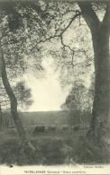 19  PEYRELEVADE - SCENE CHAMPETRE (ref 22630) - Altri Comuni