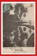 AMERIQUE - ANTILLES -  JAMAIQUE -  By Still Waters - Jamaïque