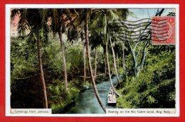 AMERIQUE - ANTILLES -  JAMAIQUE - Boating On The Rio Cobre Canal Bog Walk - Jamaïque