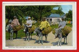 AMERIQUE - ANTILLES -  JAMAIQUE --  Greetin,gs From - Jamaïque