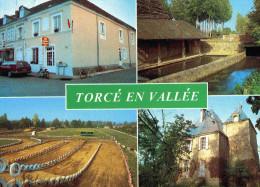 CPM Torcé En Vallée - France
