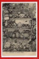 AMERIQUE - ANTILLES -  JAMAIQUE -- Collection Of Jamalca Fruits - Jamaïque