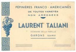 Carte Commerciale : Pépinières Franco-Américaines Laurent Taliani, Domaine De La Farelle, Garons ( Gard ), Raisins - Autres Collections