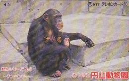 Télécarte Japon - ANIMAL - SINGE & Son Petit - CHIMPANZE  - MONKEY APE Japan Phonecard - AFFE Telefonkarte - BE 230 - Japan
