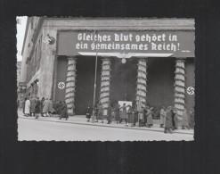 Österreich Photo Volksabstimmung Für Den Anschluss 1938 - Political Parties & Elections