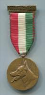 M409 MEDAILLE SUISSE MAITRE CHIEN BERGER ALLEMAND LOUP DISTINCTION - Médailles & Décorations