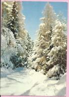 Happy New Year - Snowy Nature, 1970., Yugoslavia (68379-04) - Anno Nuovo