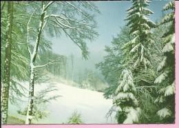 Happy New Year - Snowy Nature, 1968., Yugoslavia (Jež C 1686) - New Year