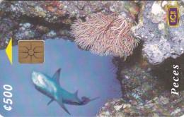 Costa Rica, CRI-C-46, Tiburon De Punta Blanca (1St Edition), Shark, 2 scans.