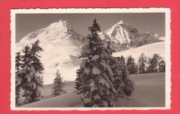 WINTERLANDSCHAFT, PIZ JULIER Und ALBANA Bei St. Moritz - GR Grisons
