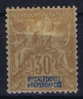 Nouvelle Calédonie  Yv Nr 49  MH/* Falz/ Charniere. 1892 - Ungebraucht