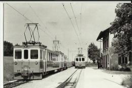 Photo-Carte  Du Croisement Des Autorails A La Gare Des Essert-sous--Champvent - Other