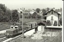 Photo-Carte  Du Passage Du Train (a L'Arret En Gare De Valeyres-sous-Montagny) En 1965 - Other