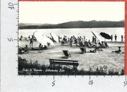 CARTOLINA VG ITALIA - Lago Di VARESE - SCHIRANNA Lido - 10 X 15 - ANN. 1958 - Varese