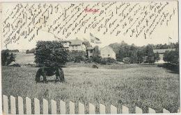 Aulestad Postally Used 1912 - Norvège