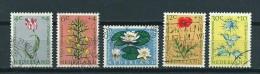 1960 Netherlands Complete Set Flowers,blümen Used/gebruikt/oblitere - Gebruikt