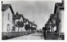 Cpsm 1958, GOLBEY, Vosges, Cités Singrüm, 2ème Quartier  (51.87) - Golbey