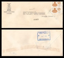 E)1994 MEXICO, MEXICO EXPORTA, STRAWBERRIES, HAMMERED COPPER, CIRCULATED COVER TO CULIACAN-SINALOA, INTERNAL USAGE,  XF - Mexico