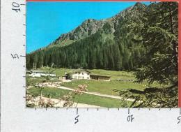 CARTOLINA VG ITALIA - DOLOMITI - S. Martino Di Castrozza (TN) - Rifugio Malga Ces - 10 X 15 - ANNULLO 1983 - Andere Städte