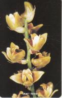 SIERRA LEONE - Orchid 1(10 Units), Mint - Sierra Leone