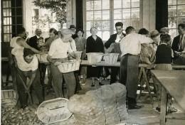 France Neuilly Sur Seine Bicentenaire De Antoine Parmentier Pomme De Terre Ancienne Photo 1937 - Places