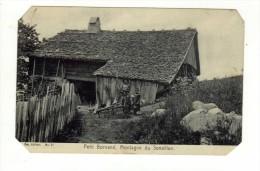 Cpa N° 21 LE PETIT BORNAND LES GLIERES Montagne De Senaillon - Ohne Zuordnung