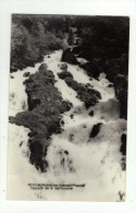 Cpsm LE PETIT BORNAND LES GLIERES Cascade De La Barbotane - Ohne Zuordnung