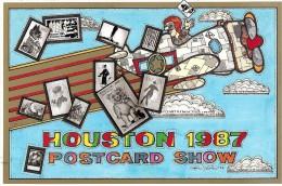 BOURSE SALON COLLECTIONS HOUSTON ETATS-UNIS  1987 AVION OURS CHAT - Bourses & Salons De Collections