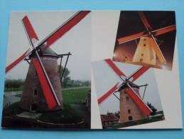 """Windmolen """" De Grote Napoleon """" ( Paul De Vos-Vlaminck) Anno 19?? ( Zie Foto´s Voor Detail ) ! - Hamme"""