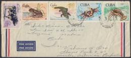1969-H-10 (LG208) CUBA 1969. FAUNA DE LA CIENAGA DE ZAPATA. LANGOSTA COCODRILO CANGREJO RANA FROG LOSBTER CROCODILE. - Cuba