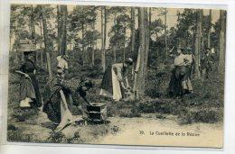 40 La Cueillette De La Résine Femmes Porteuses Et Résiniers 1910    /D02-2016 - Unclassified