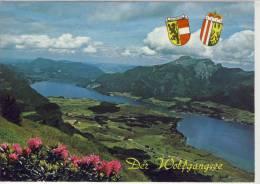 Der WOLFGANGSEE - Salzkammergut, Panorama, Schöner Motiv-Stempel - St. Wolfgang