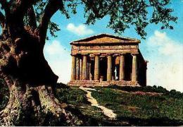 Agrigento       H745       Tempio Della Concordia - Agrigento