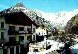Courmayeur       H798       Hotel La Pigne ( Voir Timbre ) - Italy