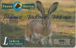 SPAIN - Rabbit, Tirage 8000, 10/00, Mint - Konijnen