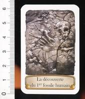 2 Scans / 1830 - La Découverte Du Premier Fossile Humain - Philippe-Charles Schmerling / Paléontologie  / TL 185/4 - Altri