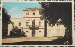 C.P.S.M. - GARD - BELLEGARDE - La Mairie - En TBE - Bellegarde