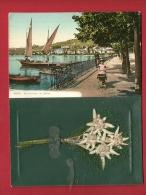 PBU-21 Carte à 2 Volets Et 4 Pages, Clatrens Ile Des Mouettes Et Le Quai De Montreux, 3ème P. Edelweiss Séchée. Circulé - VD Vaud