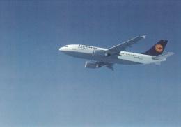 Airplanes Postcard: Airbus 310-300 Lufthansa - Mint (SKO1-14) - Unclassified