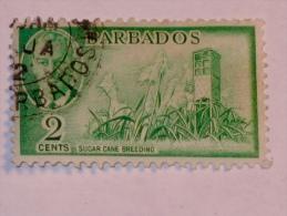BARBADES / BARBADOS   1950  SCOTT #217 - Barbades (1966-...)