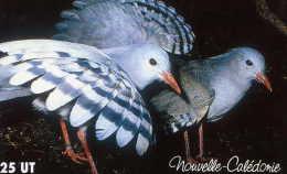 Telecarte De Nouvelle Caledonie NC 101 - Nouvelle-Calédonie