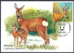 2012 ESTONIE 669  Animal, Chevreuil Carte Maximum - Estonie
