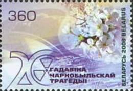 Belarus Weissrussland 2006 Mi. Nr. 618 20th Aniv. Of Katastrophe Tschernobyl - Bielorrusia