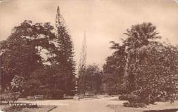 Trinidad - Botanic Garden - Postcards