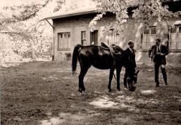 Photo Originale Equitation - Cavaliers et Cheval Noir - Sport �questre -